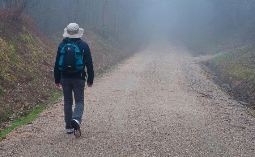 Ignatian Retreat in Daily Life – Lent 2019